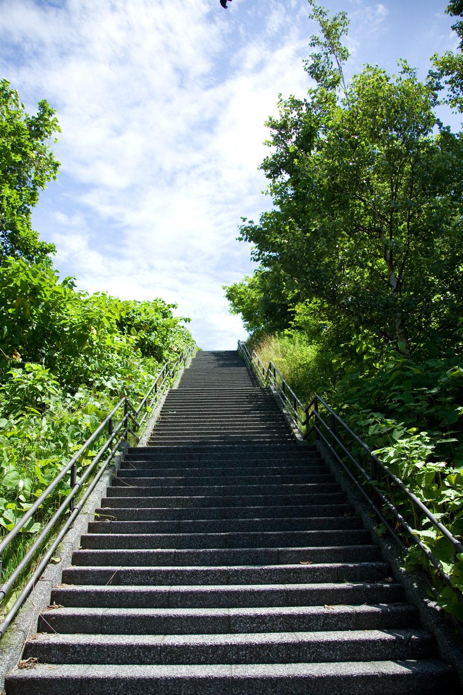 札幌は夏本番になりました